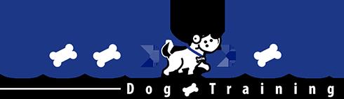 Good Dog – Dog Training Lake Tahoe